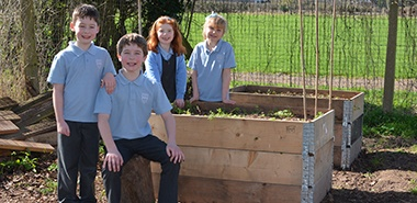 Pallets help Broadwas CE Primary School 'out hop' local rabbits