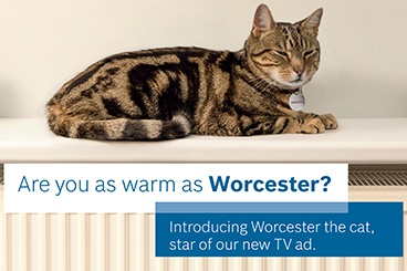 Say hello to Worcester The Cat - The star of our £2m advertising campaign